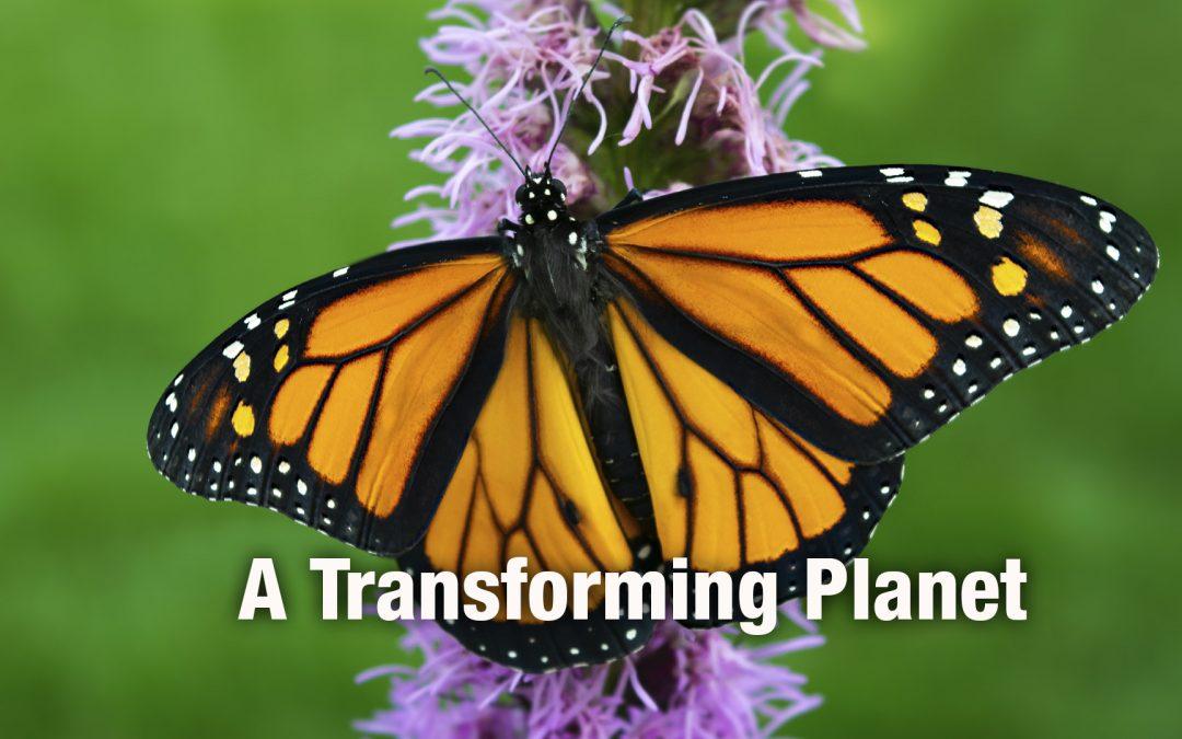 A Transforming Planet